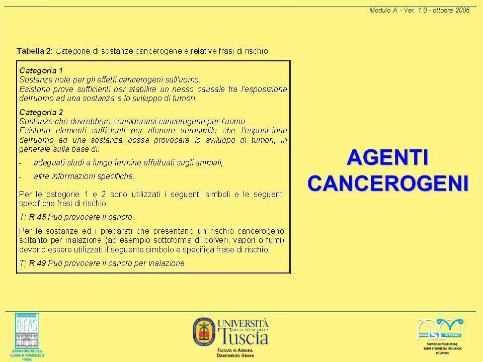 Modulo A - Ver. 1.0 - ottobre 2006 AGENTI CANCEROGENI