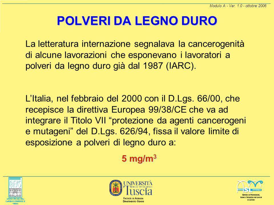 POLVERI DA LEGNO DURO Modulo A - Ver. 1.0 - ottobre 2006.