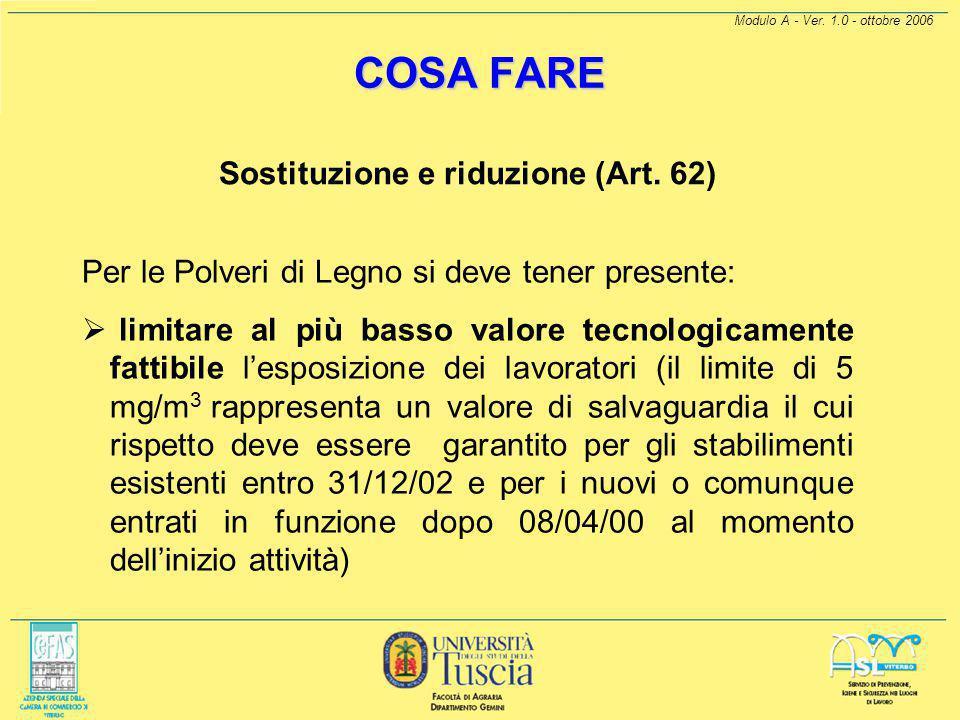 Sostituzione e riduzione (Art. 62)
