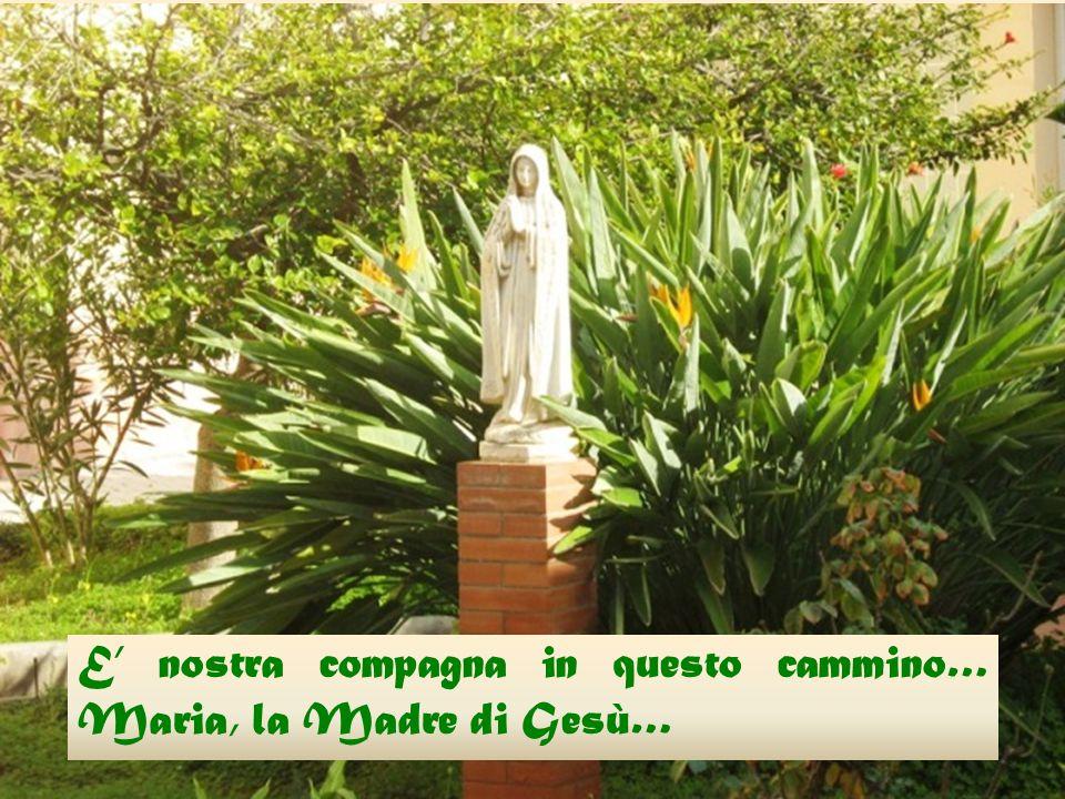 E' nostra compagna in questo cammino… Maria, la Madre di Gesù