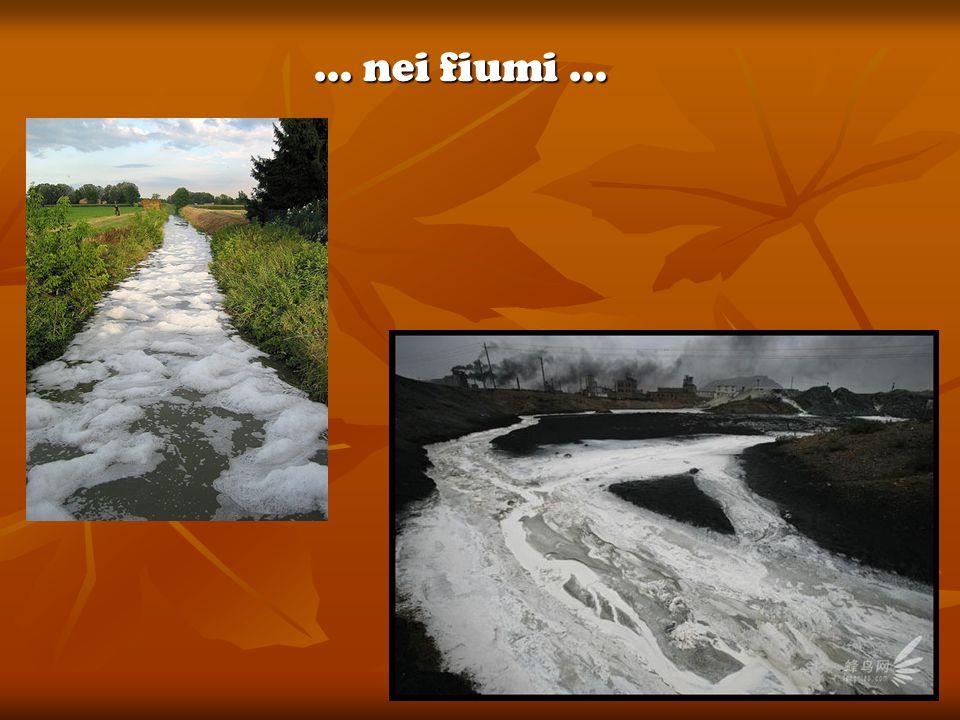 … nei fiumi …