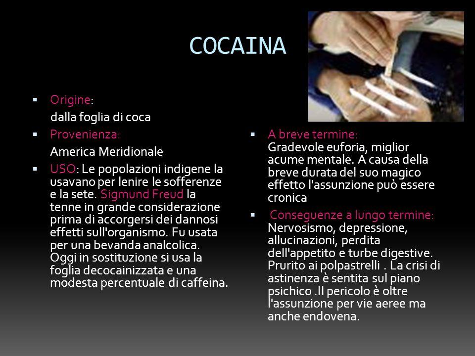 COCAINA Origine: dalla foglia di coca Provenienza: America Meridionale