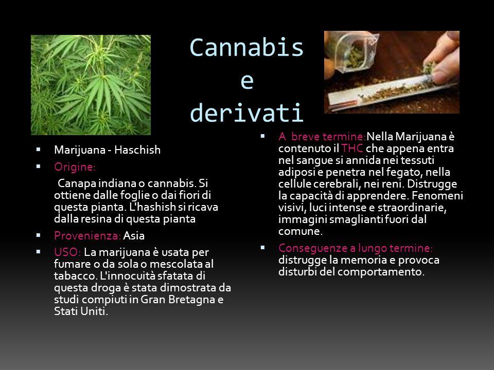 Cannabis e derivati Marijuana - Haschish. Origine: