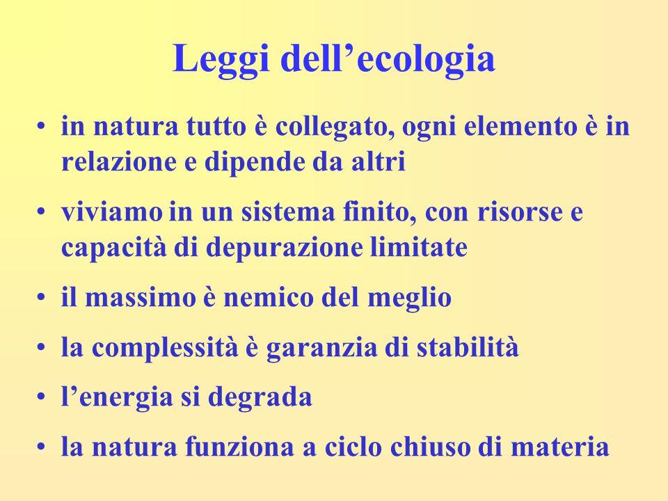 Leggi dell'ecologia in natura tutto è collegato, ogni elemento è in relazione e dipende da altri.