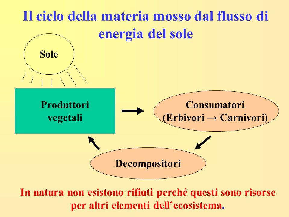 Il ciclo della materia mosso dal flusso di energia del sole