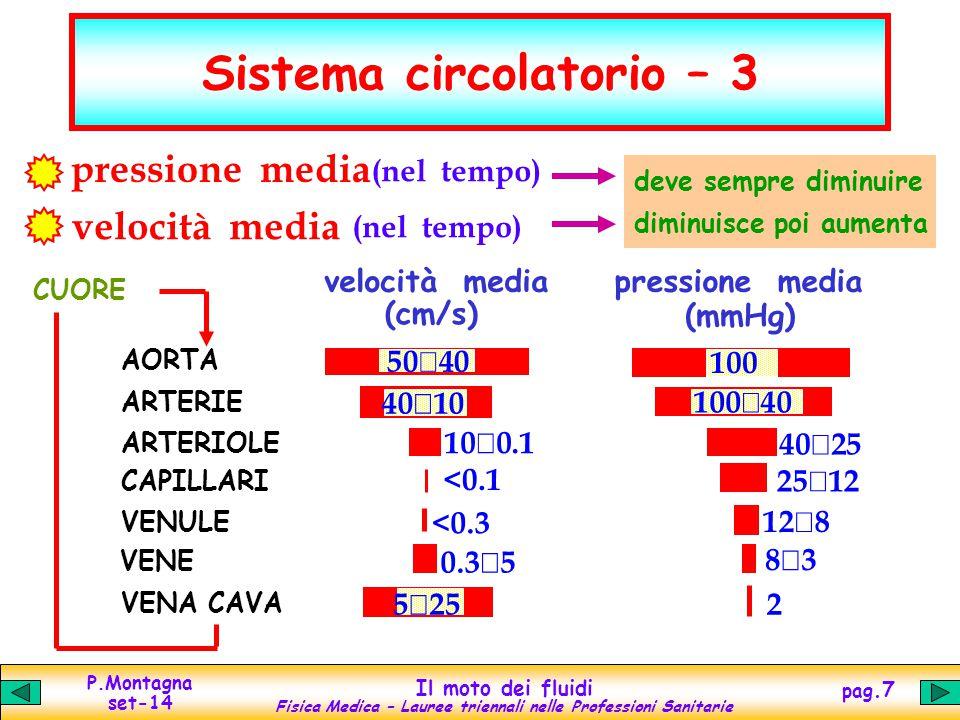 Sistema circolatorio – 3