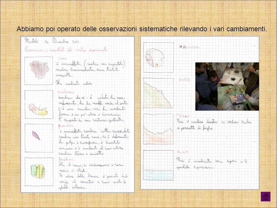 Abbiamo poi operato delle osservazioni sistematiche rilevando i vari cambiamenti.