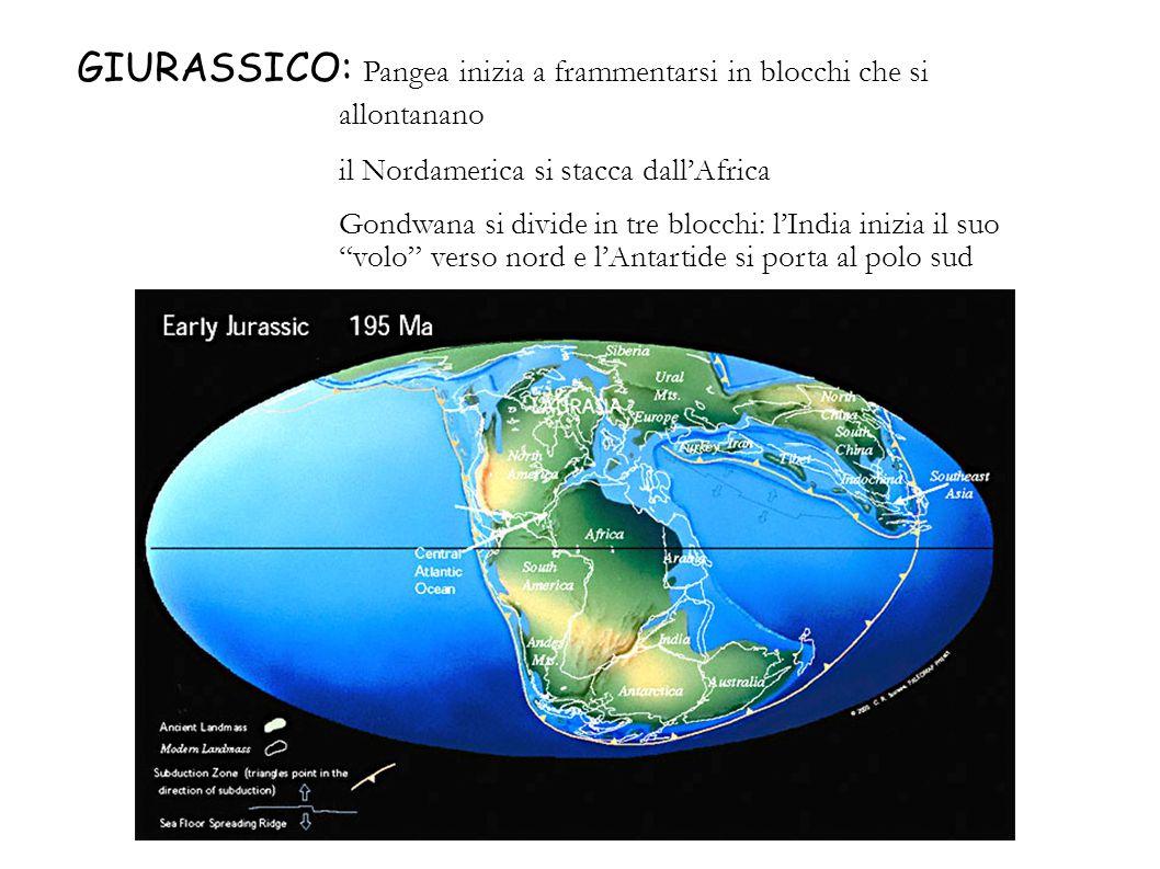 GIURASSICO: Pangea inizia a frammentarsi in blocchi che si allontanano