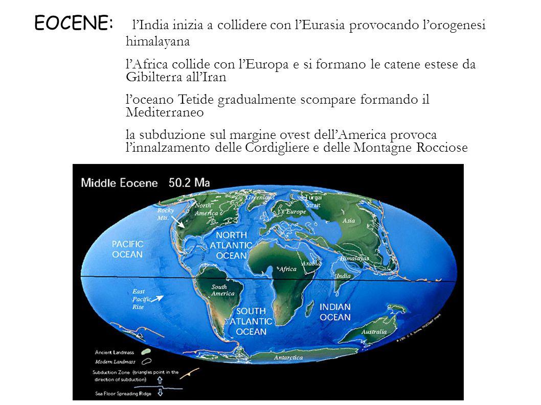 EOCENE: l'India inizia a collidere con l'Eurasia provocando l'orogenesi himalayana