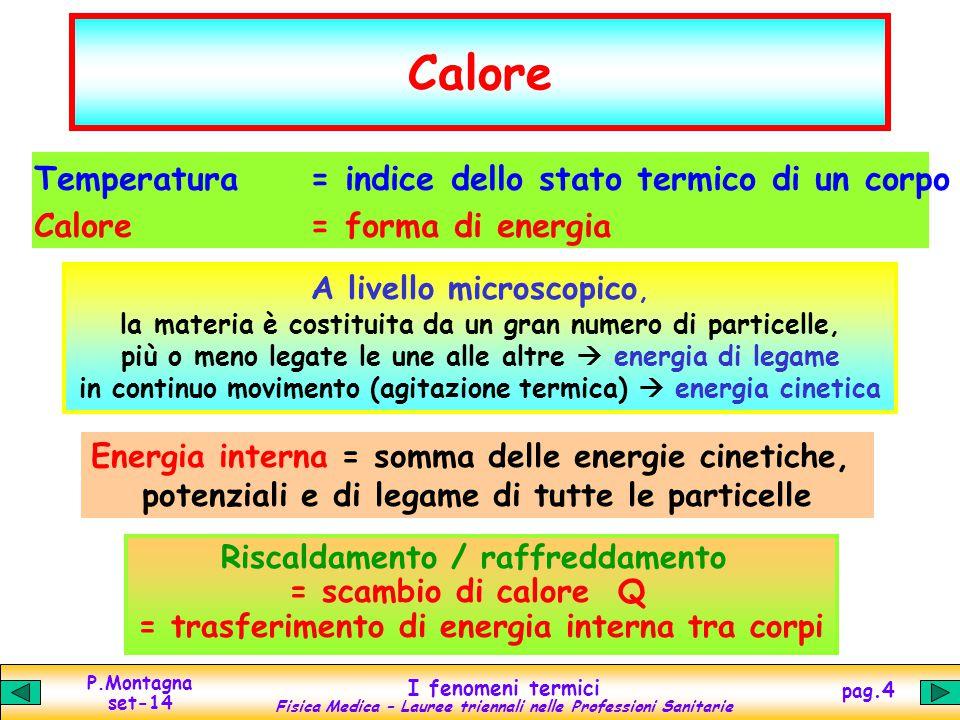 Calore Temperatura = indice dello stato termico di un corpo