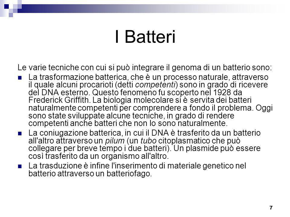 I Batteri Le varie tecniche con cui si può integrare il genoma di un batterio sono: