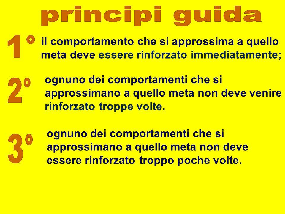 principi guida 1° 2° 3° il comportamento che si approssima a quello