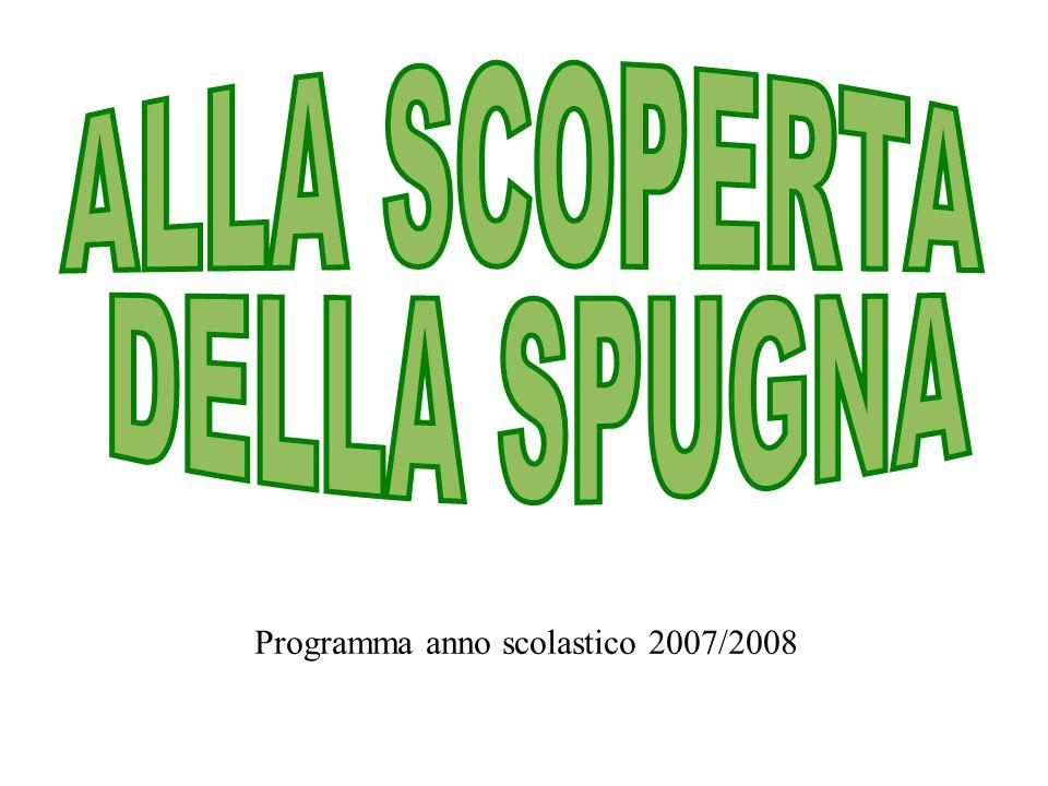 Programma anno scolastico 2007/2008