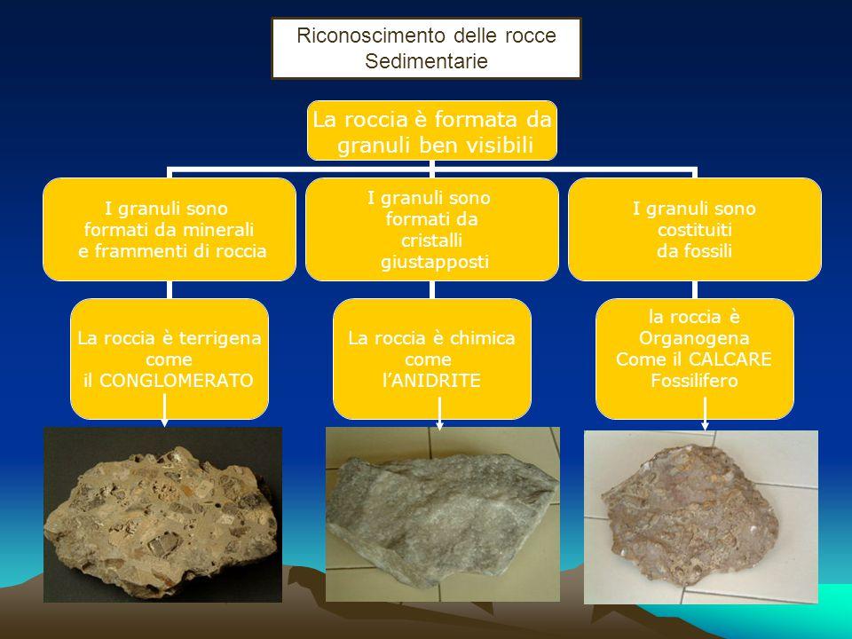 Riconoscimento delle rocce Sedimentarie