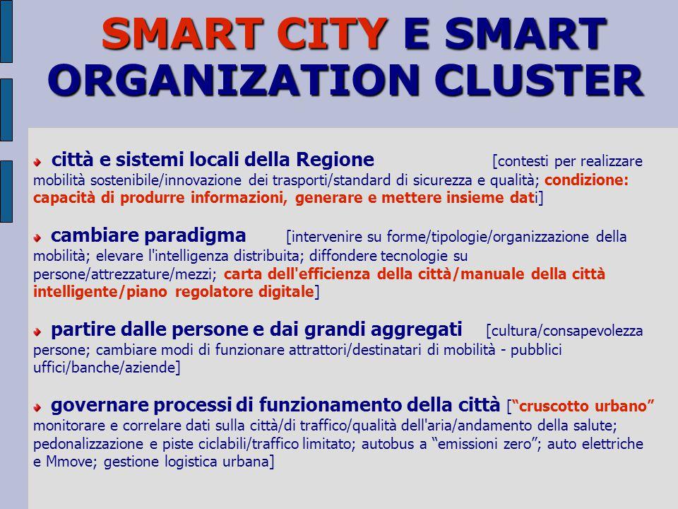 SMART CITY E SMART ORGANIZATION CLUSTER