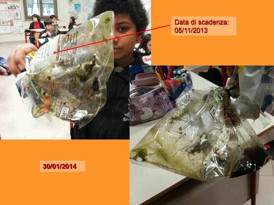 Data di scadenza: 05/11/2013 30/01/2014