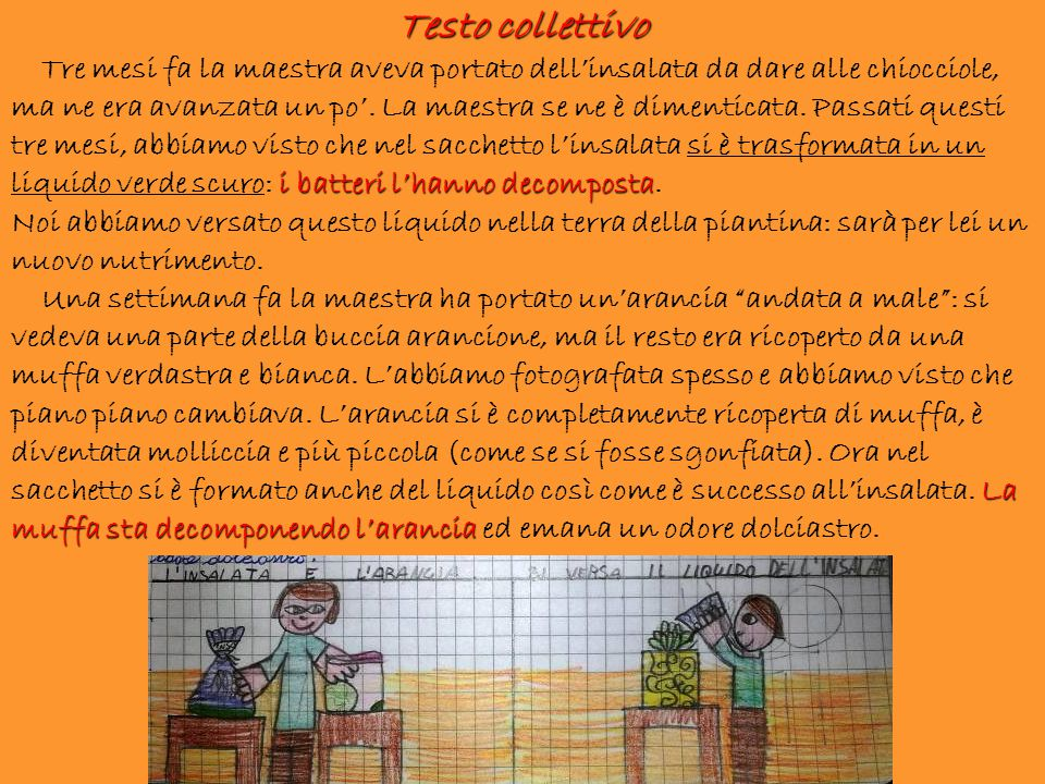 Testo collettivo