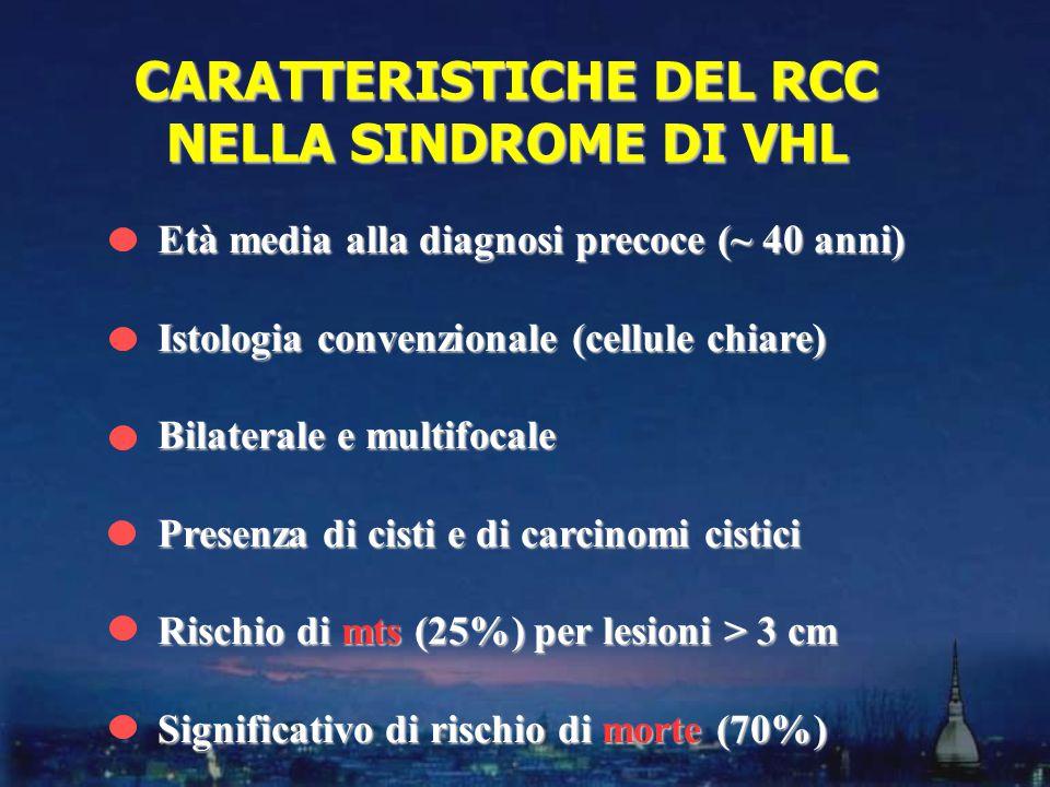 CARATTERISTICHE DEL RCC