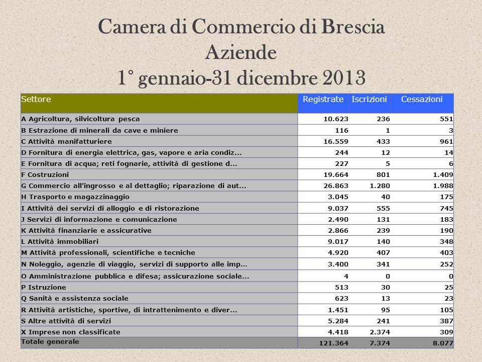 Camera di Commercio di Brescia Aziende 1° gennaio-31 dicembre 2013