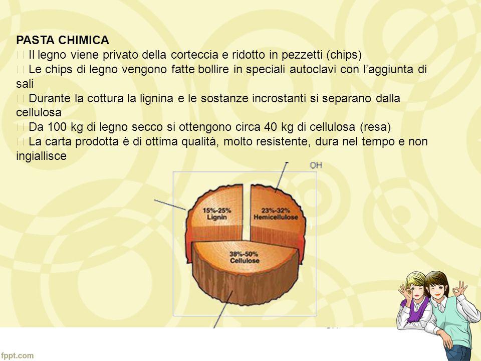 PASTA CHIMICA  Il legno viene privato della corteccia e ridotto in pezzetti (chips)