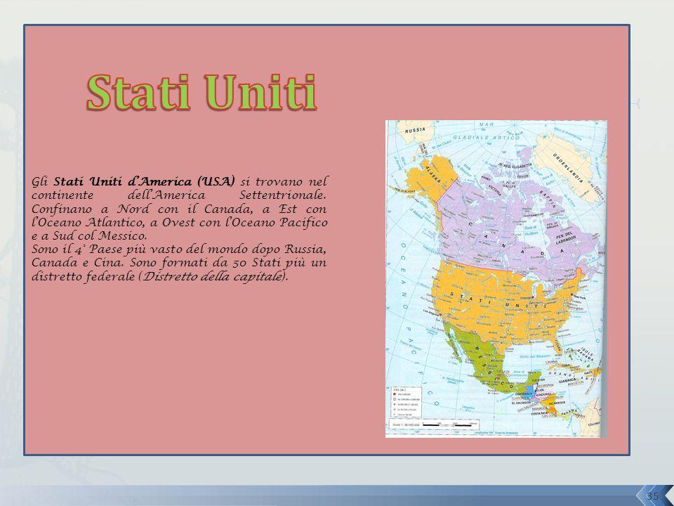 Gli Stati Uniti d'America (USA) si trovano nel continente dell'America Settentrionale. Confinano a Nord con il Canada, a Est con l'Oceano Atlantico, a Ovest con l'Oceano Pacifico e a Sud col Messico.