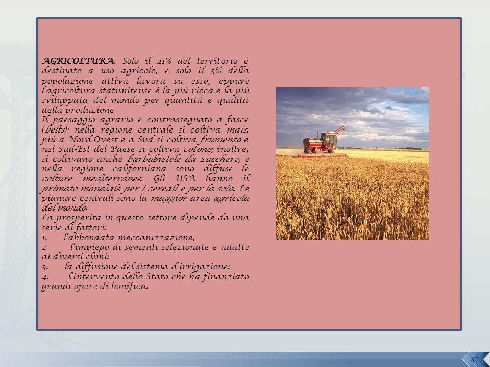 AGRICOLTURA. Solo il 21% del territorio è destinato a uso agricolo, e solo il 3% della popolazione attiva lavora su esso, eppure l'agricoltura statunitense è la più ricca e la più sviluppata del mondo per quantità e qualità della produzione.