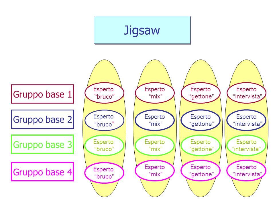 Jigsaw Gruppo base 1 Gruppo base 2 Gruppo base 3 Gruppo base 4 Esperto