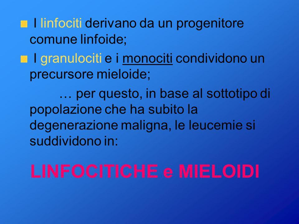 LINFOCITICHE e MIELOIDI