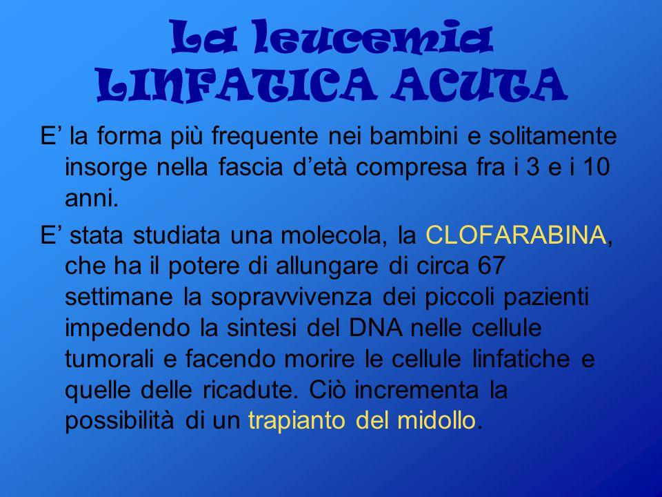La leucemia LINFATICA ACUTA
