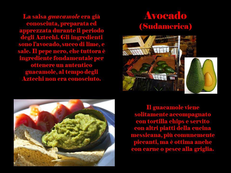 Avocado (Sudamerica)
