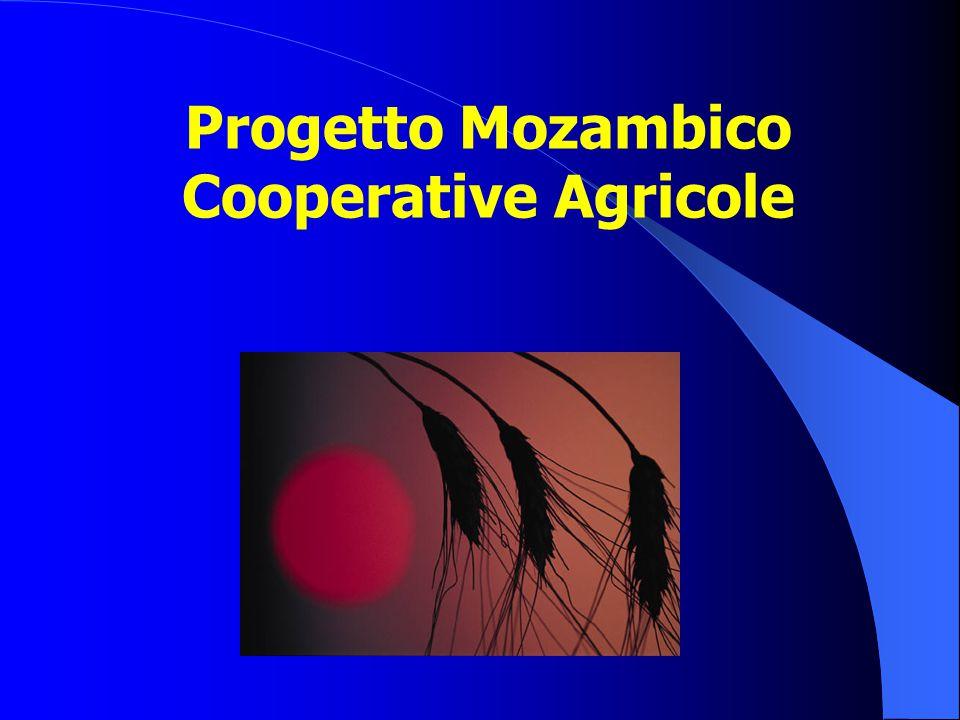 Progetto Mozambico Cooperative Agricole