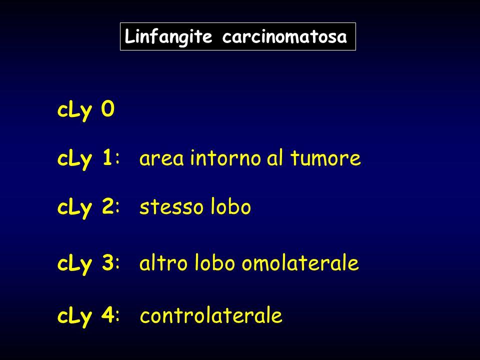 cLy 1: area intorno al tumore
