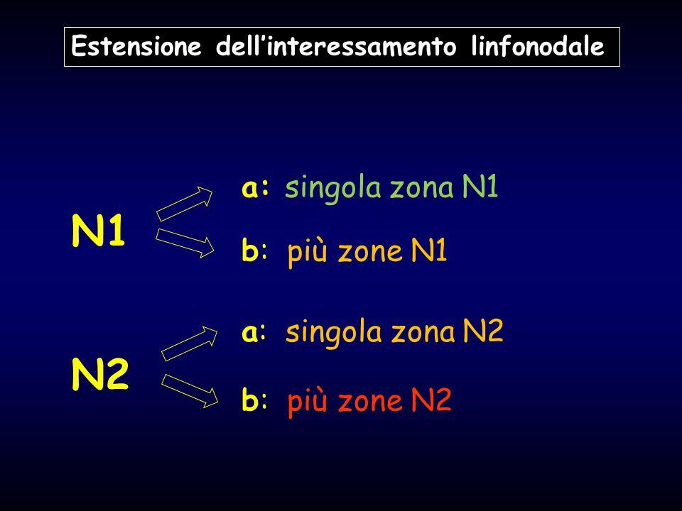 N1 N2 a: singola zona N1 b: più zone N1 a: singola zona N2