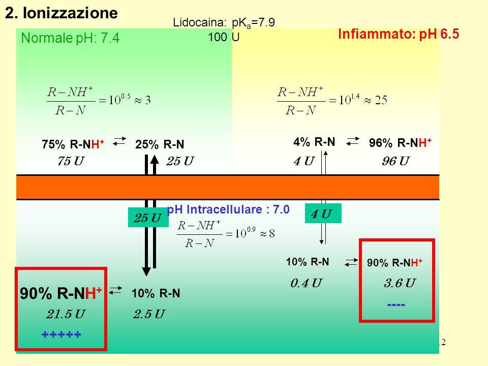 2. Ionizzazione 90% R-NH+ Infiammato: pH 6.5 Normale pH: 7.4 ----