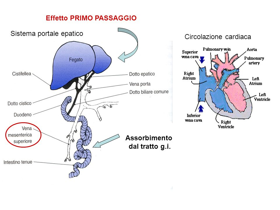 Effetto PRIMO PASSAGGIO