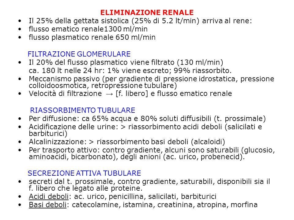 ELIMINAZIONE RENALE Il 25% della gettata sistolica (25% di 5.2 lt/min) arriva al rene: flusso ematico renale1300 ml/min.