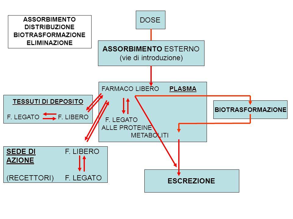 DOSE ASSORBIMENTO ESTERNO (vie di introduzione) SEDE DI F. LIBERO