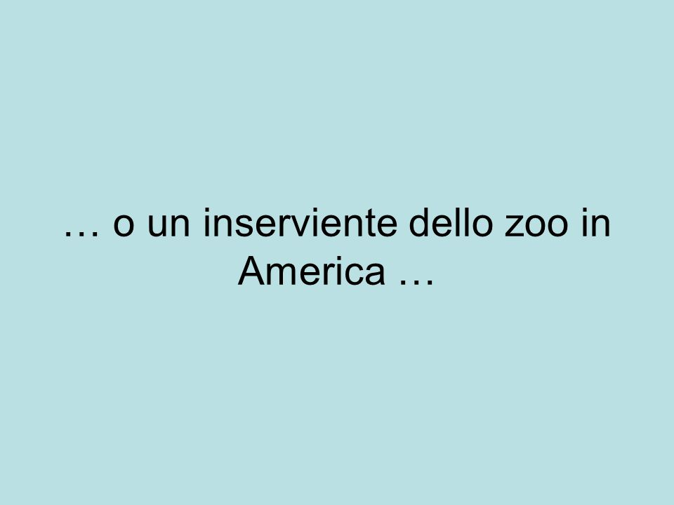 … o un inserviente dello zoo in America …