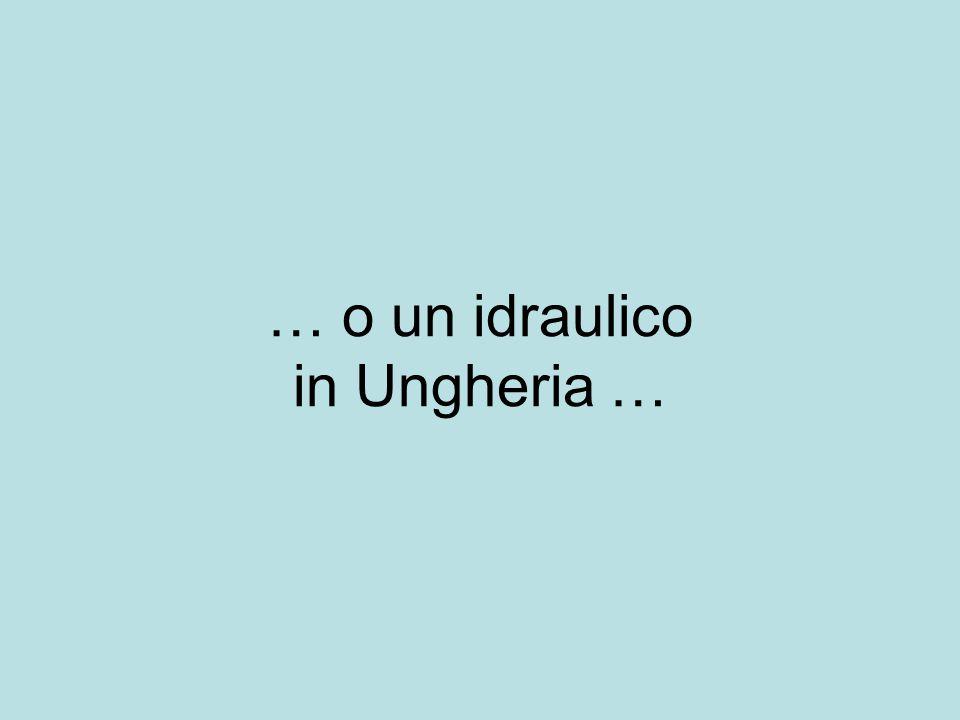 … o un idraulico in Ungheria …