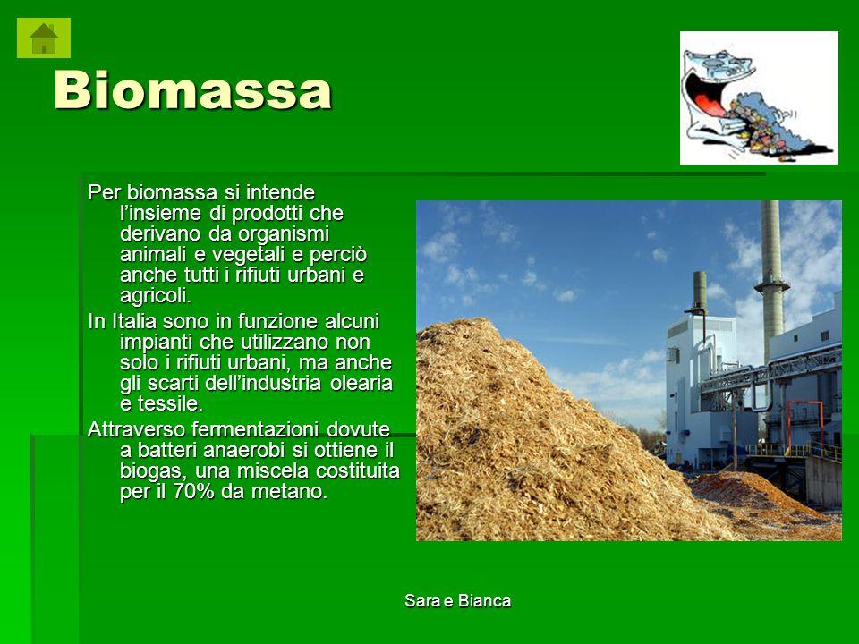 Biomassa Per biomassa si intende l'insieme di prodotti che derivano da organismi animali e vegetali e perciò anche tutti i rifiuti urbani e agricoli.