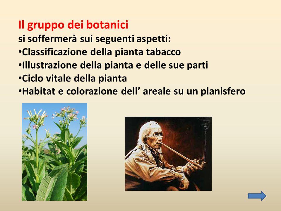 Il gruppo dei botanici si soffermerà sui seguenti aspetti: