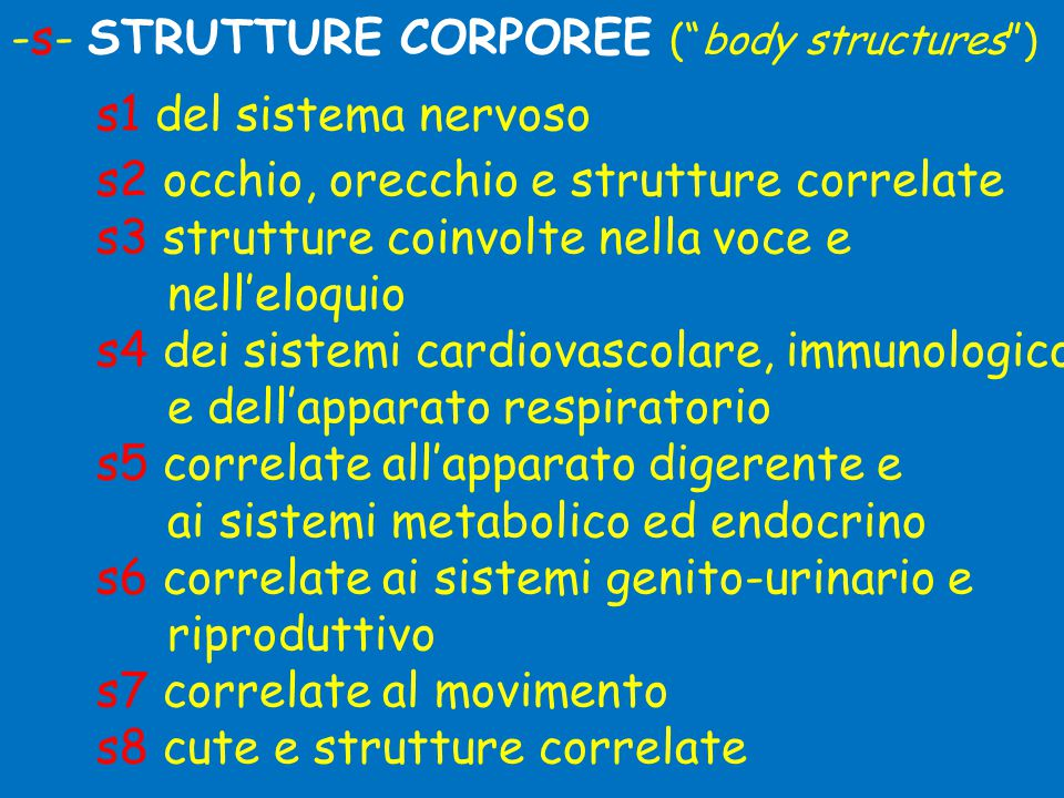 -s- STRUTTURE CORPOREE ( body structures )