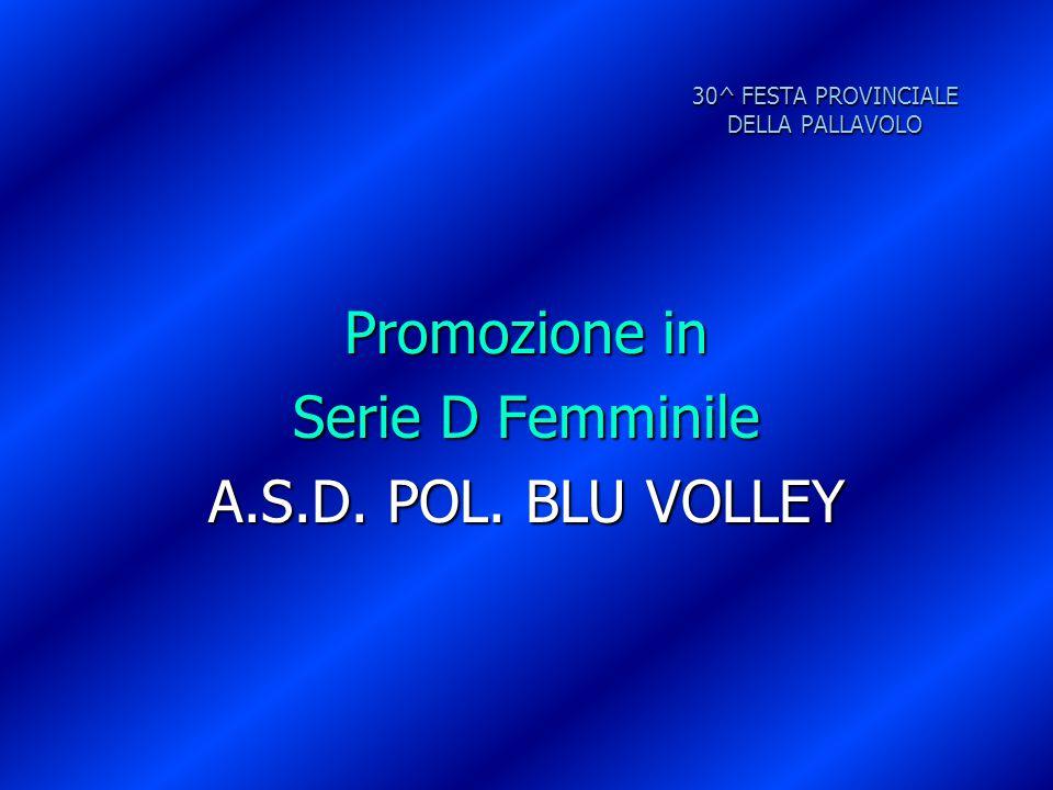 30^ FESTA PROVINCIALE DELLA PALLAVOLO