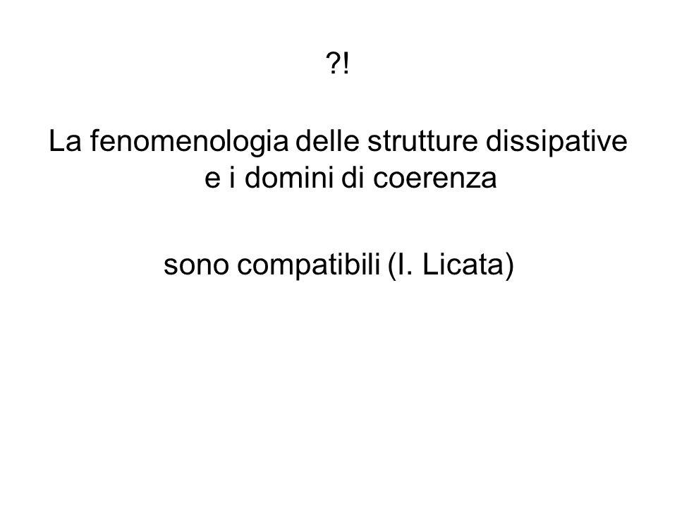 La fenomenologia delle strutture dissipative e i domini di coerenza