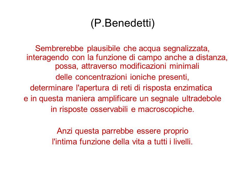 (P.Benedetti)