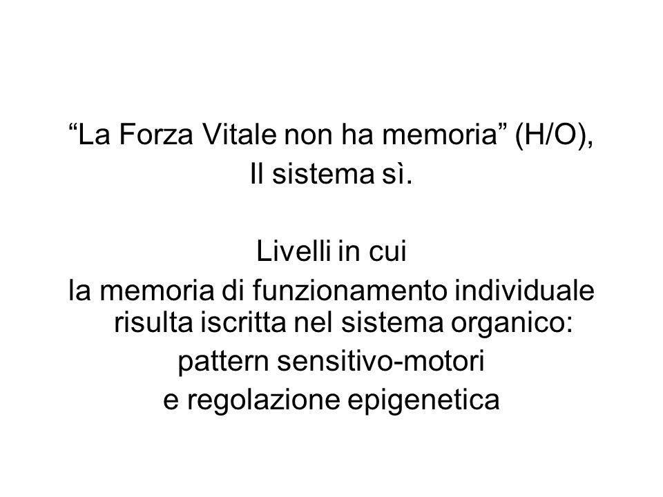 La Forza Vitale non ha memoria (H/O), Il sistema sì. Livelli in cui