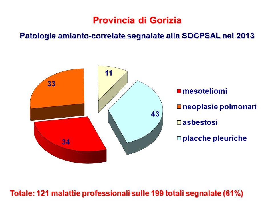 Patologie amianto-correlate segnalate alla SOCPSAL nel 2013