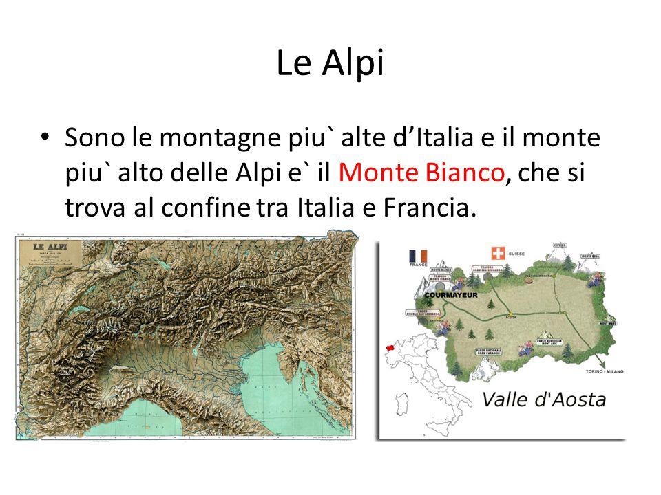 Le Alpi Sono le montagne piu` alte d'Italia e il monte piu` alto delle Alpi e` il Monte Bianco, che si trova al confine tra Italia e Francia.