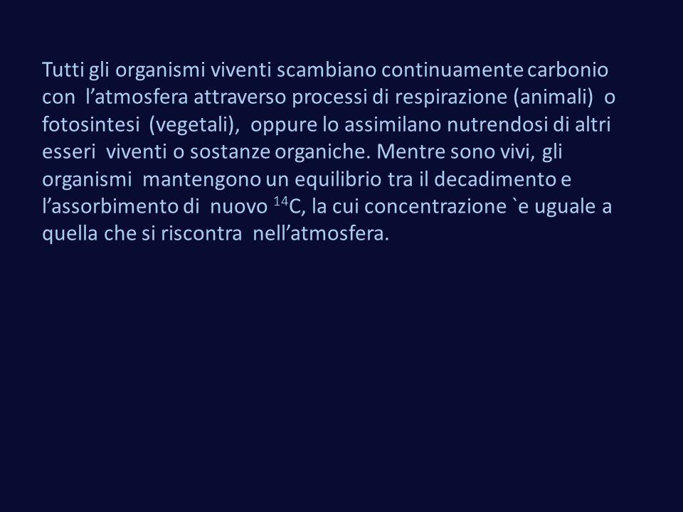 Tutti gli organismi viventi scambiano continuamente carbonio con l'atmosfera attraverso processi di respirazione (animali) o