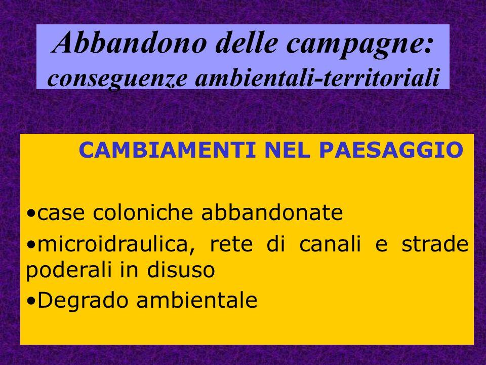Abbandono delle campagne: conseguenze ambientali-territoriali